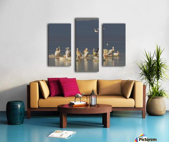 Pelicans of the Salton Sea Canvas print
