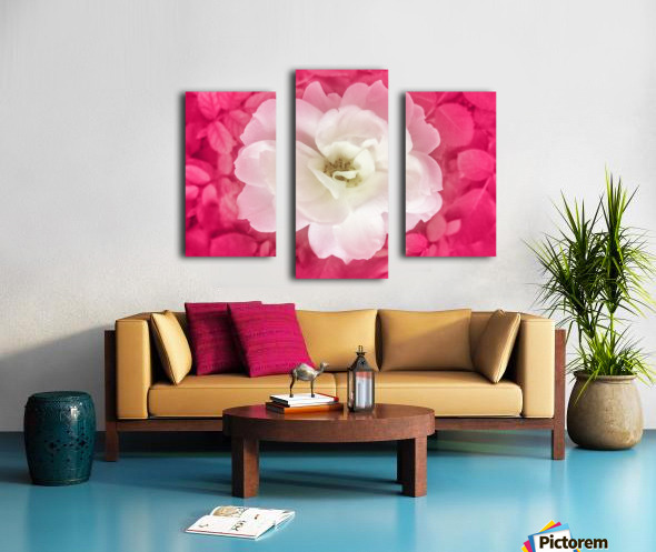 White Rose Top View Canvas print