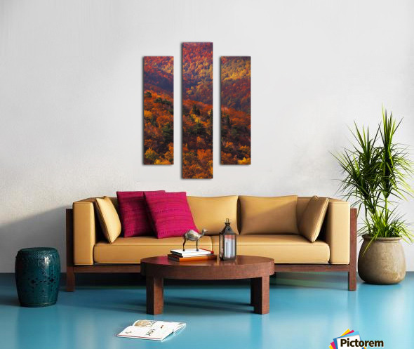 landscape_2_0441 Canvas print