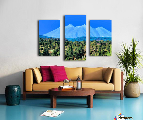 Something Different Canvas print