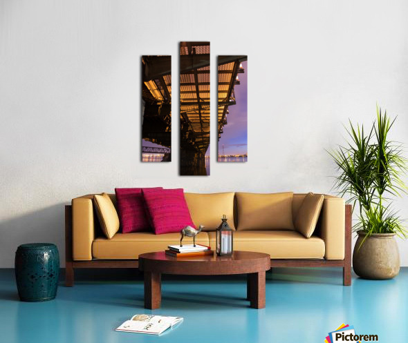 IMG_2276 Canvas print