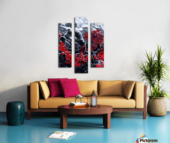Red Cliff Canvas print