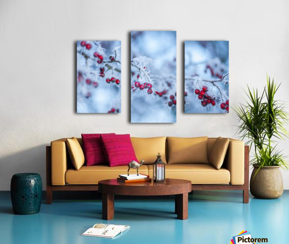 Winter flowers Canvas print