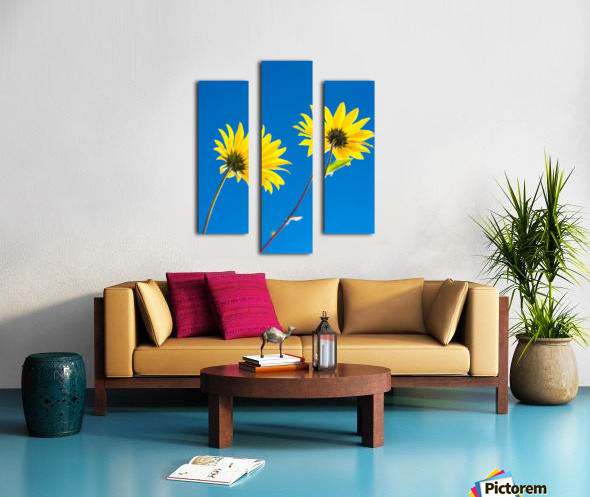 Yellow flowers and blue sky Canvas print