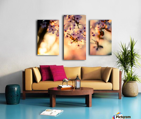 Beautiful Spring cherry flowers Canvas print