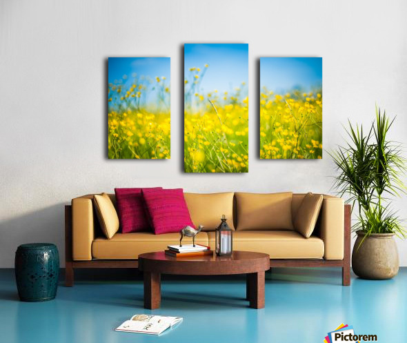 Summer flowers, yellow and blue Canvas print