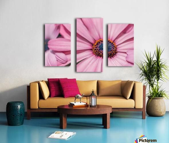 Gerbera flower background Canvas print