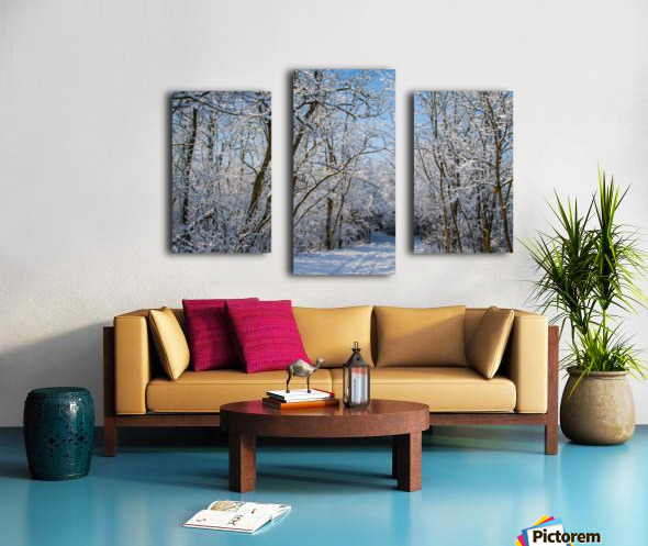 Forest covered with snow Canvas print