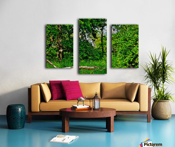 Life in the Shadows of the Trees Canvas print