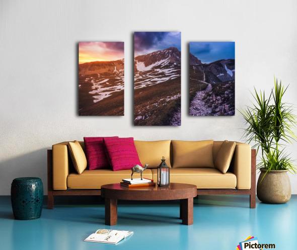 Karoo Canvas print