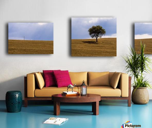 Tuscany Tree Canvas print