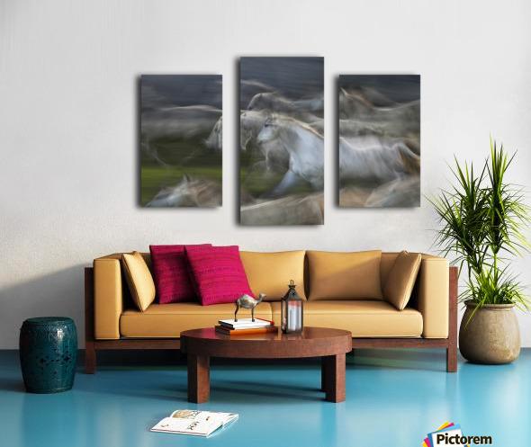 Stampedo Canvas print