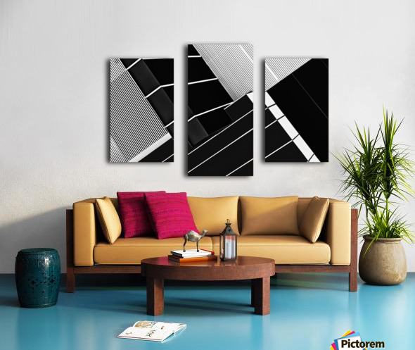 Fragile Symmetry Canvas print