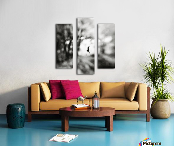 Equinox Canvas print