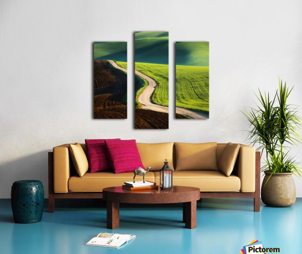 Road Canvas print