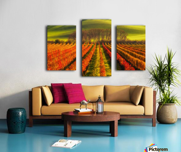 vine-growing Canvas print