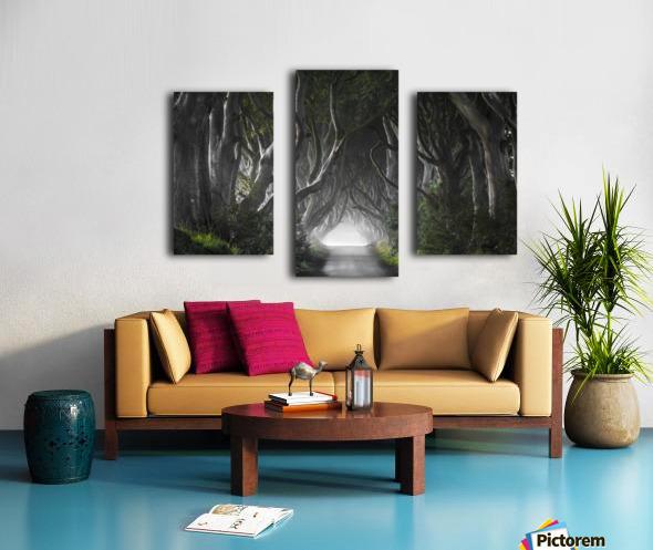 DARK HEDGES Canvas print