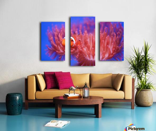 Finding Nemo Canvas print