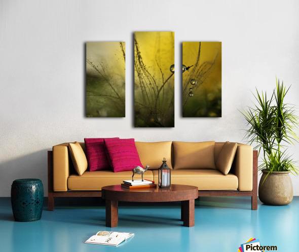 A golden morning shower Canvas print