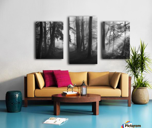 The first light... Canvas print