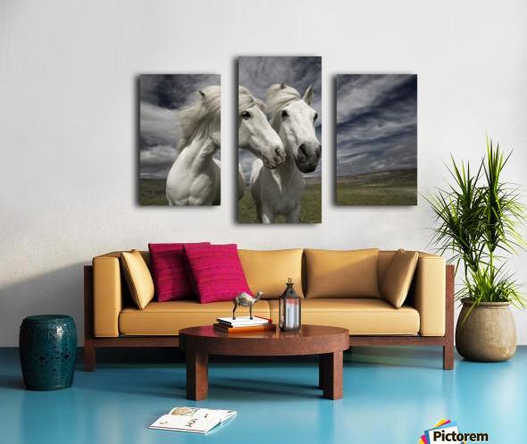 Inseparables Canvas print