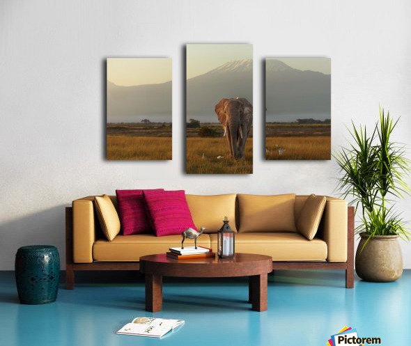 Under the roof of Africa Canvas print