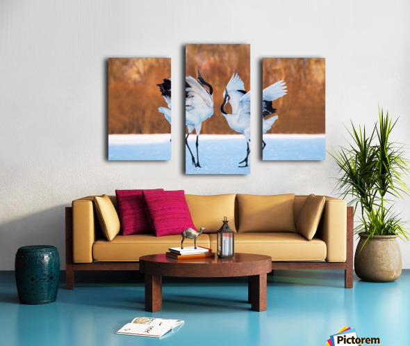 The dance of love Canvas print