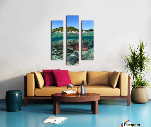 Along shore Canvas print