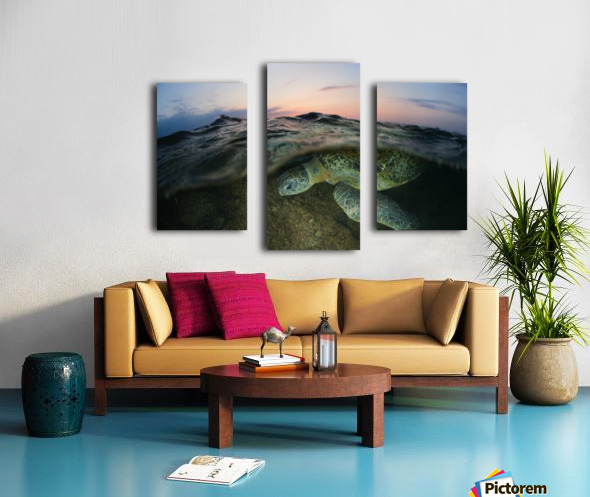 Under the wave Canvas print