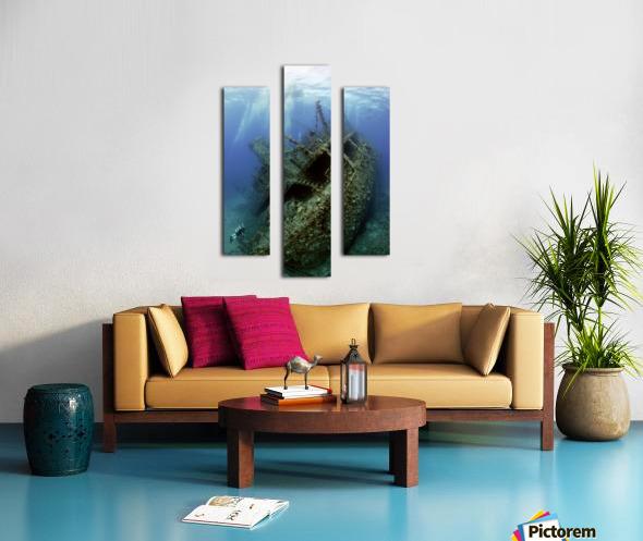 Giannis D wreck. Canvas print