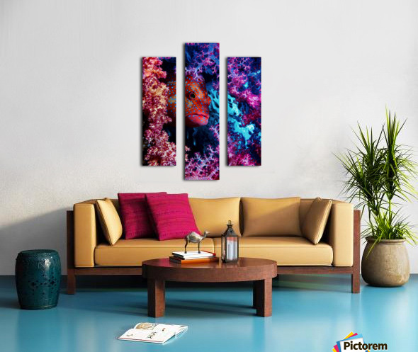 Coral Hind Canvas print