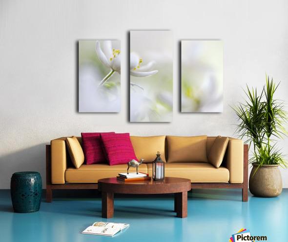 White Spring Canvas print