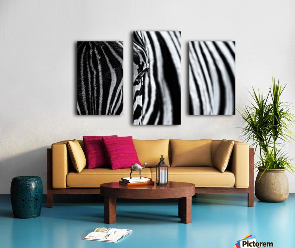 The look of nature Canvas print