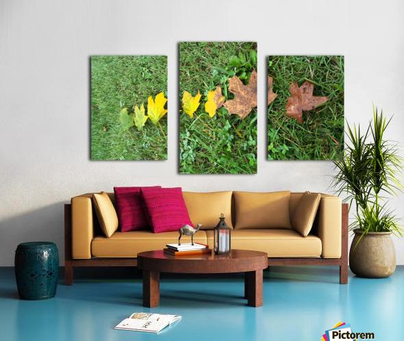 Lifespan Canvas print