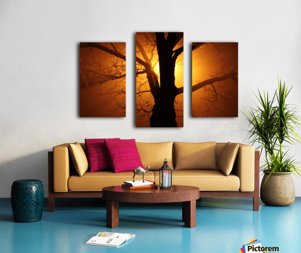 abstract sun tree Canvas print
