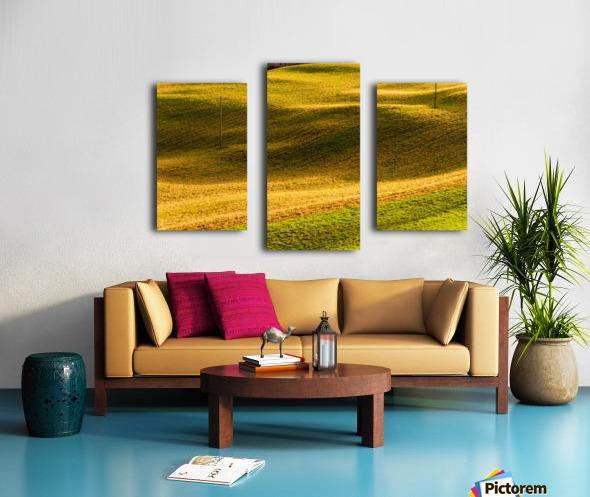 Toano 2 Canvas print