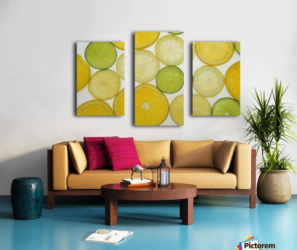 Citrus Slices Canvas print