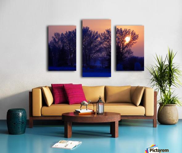 Sun Peeking Through Some Trees Canvas print