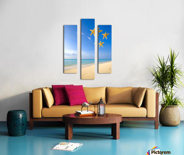 Starfish Falling In Front Of The Ocean Canvas print