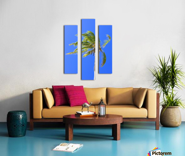 Palm Tree Against Clear Blue Sky Canvas print