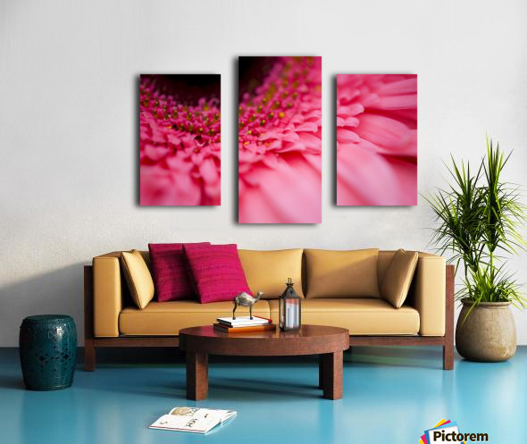 Close Up Of A Pink Flower Canvas print