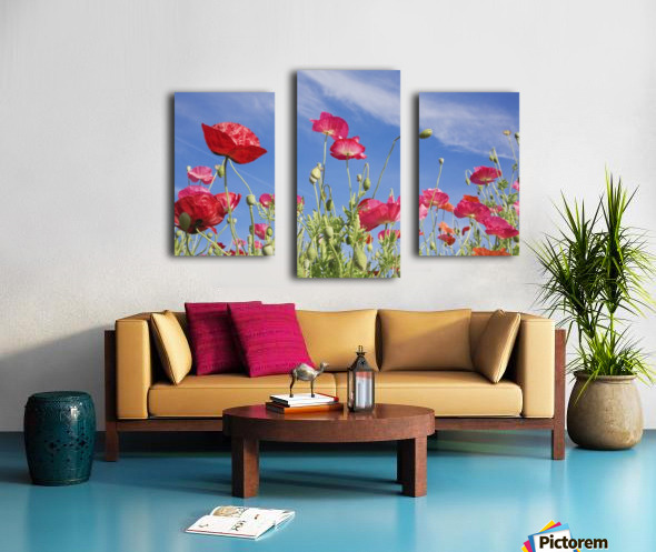 Red Flowers Against Blue Sky Canvas print