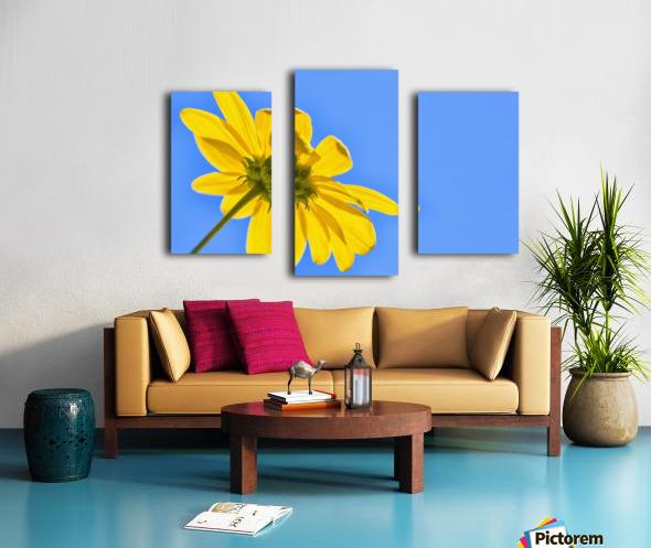 Yellow flower against a blue sky; Bolivia Canvas print