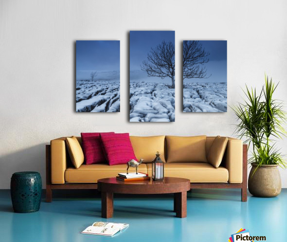 Cold Blue Trees, Yorkshire Dales, UK Canvas print