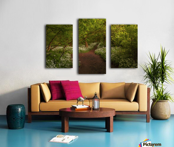The Path to Fairytales, Ramsons Wood, Lancashire, UK Canvas print