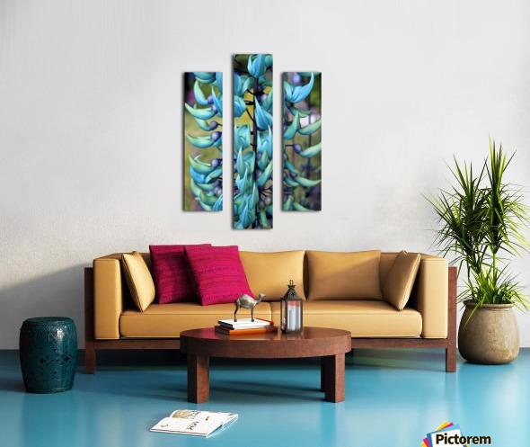 Blue jade plant; Hawaii, United States of America Canvas print