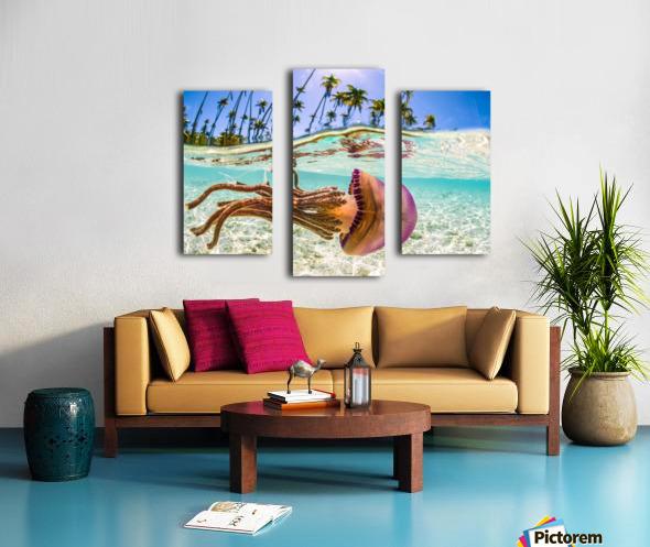 Stow Away Canvas print