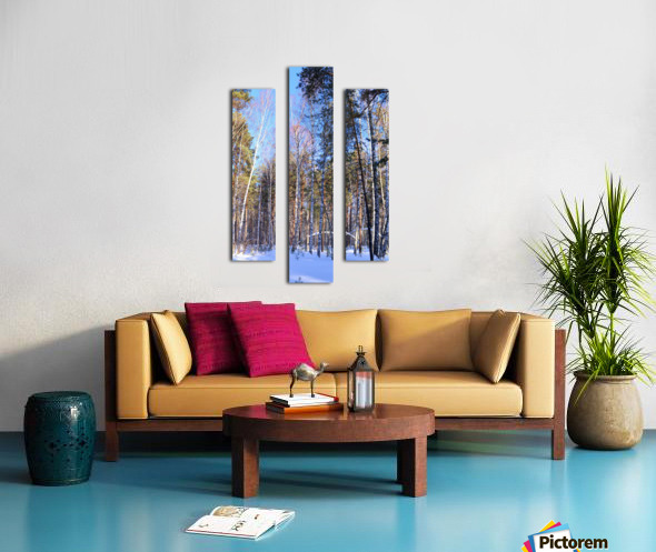 Winter. Forest. Shadow Canvas print