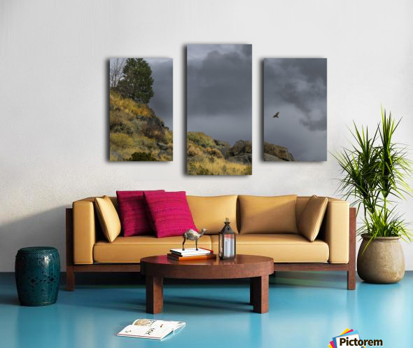 Desert Flyer Canvas print