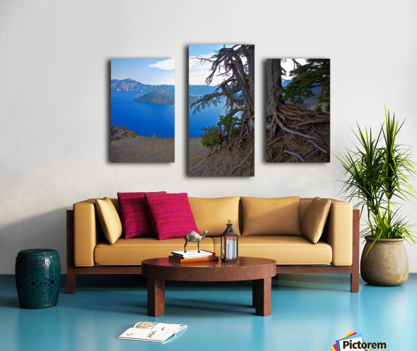 Gnarled White Pine overlooking Crater Lake Aug 2015 Canvas print